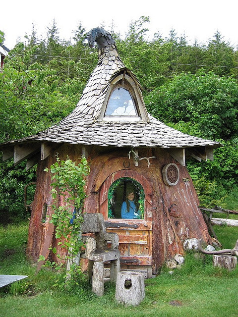 Sitka Spruce Tree House, Queen Charlotte Islands, British Columbia, Canada