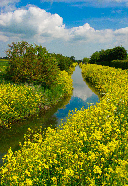 Louth Canal walk in Lincolnshire, England