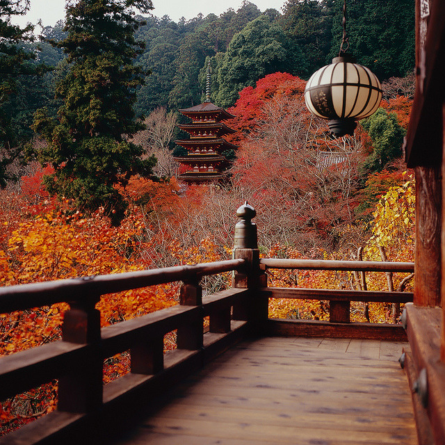 Autumn colours at Hase-Dera Temple in Nara, Japan
