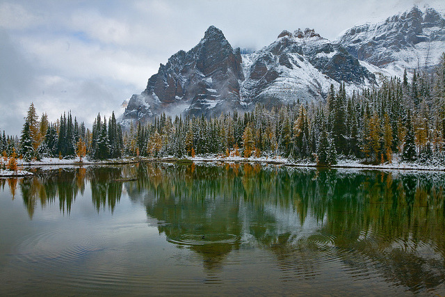 Schaffer Lake in Yoho National Park, Canada