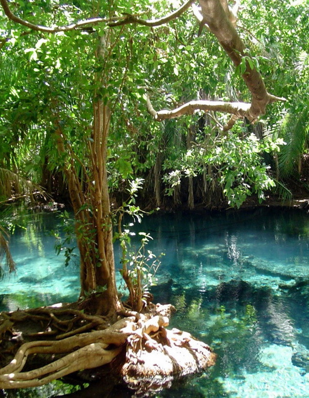 Beautiful pools at Chemka Hot Springs near Moshi, Tanzania
